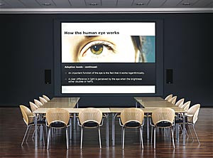 Optical rear projection screens